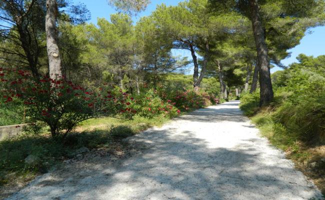 Ventabren bouche du rhone location de vacances location vacances - Villa de vacances exotiques island views ...