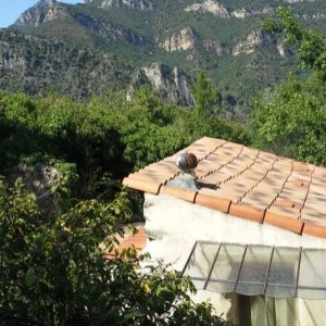 Petit paradis vert / Peaceful Provençale Paradise