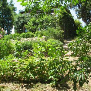 Le Jardin des Albères