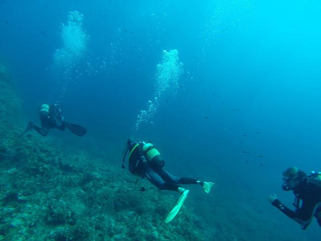 plonger-dans-le-var