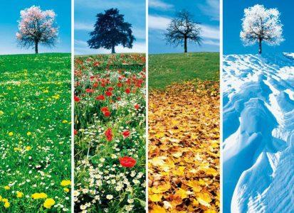 Définissez les différentes saisons touristiques dans votre région...